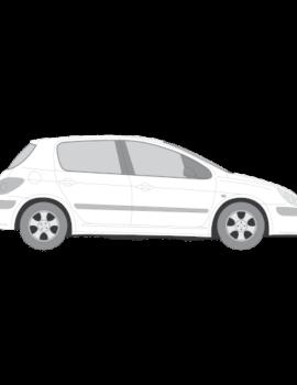 Peugeot 307 5-ovinen hatchback