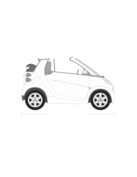 Smart ForTwo avoauto